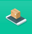 parcel box on mobile phone vector image vector image
