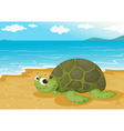 Tortoise on sea shore vector | Price: 1 Credit (USD $1)
