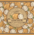 vintage onion label on seamless pattern vector image