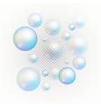 set of multicolored transparent soap bubbles vector image