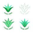 Aloe vera icons vector image vector image
