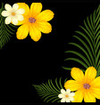 background design with yellow flowers vector image