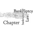 bankruptcy law chapter vector image vector image