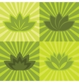 Flat green flowers on background vector image