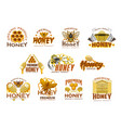 honey premium sweet food icon with bee and comb vector image