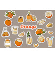 stickers of oranges cocktails baking orange vector image vector image