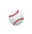 beysball ball vector image