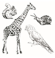 Black sketch animals set on a background vector image vector image