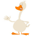 cute goose bird animal character vector image vector image
