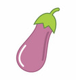 eggplant colorful vector image