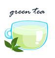 hot green tea healthy berverange vector image vector image