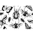 tropical insects seamless pattern backdrop vector image vector image