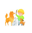 boy kid playing training three dogs throwing vector image vector image