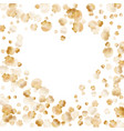 gold seashells pearl bivalved mollusks vector image