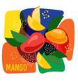 ripe mango fruits on vector image