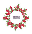 round natural backdrop or wreath made of vector image vector image