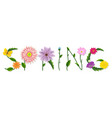 spring text with flowers vector image vector image