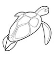 turtle icon outline vector image