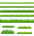 Big Green Grass vector image vector image