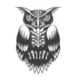 owl tattoo in engraving style vector image vector image