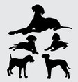 pointer and any kind of dog silhouette vector image vector image