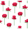 red roses bud vector image vector image
