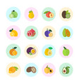 set fruits vector image