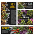 spice and herb food seasoning blackboard banner vector image vector image