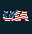 text usa filled with american flag vector image