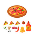 hot fresh pizza ingredients icons vector image