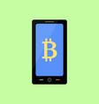 checking bitcoin balance on mobile vector image