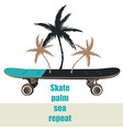 fashion print skateboard and palms vector image
