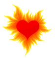 heart with a bright flame vector image