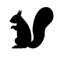 black silhouette of a squirrel vector image vector image