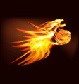 Fire Dragon with a basketball vector image vector image