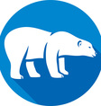 Polar Bear Icon vector image vector image