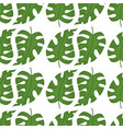 summer tropical seamless pattern vector image vector image