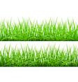 Green Grass Borders Set vector image