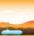 a cactus and desert cartoon eps10 vector image