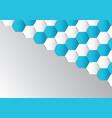 abstract hexagon polygonal background vector image