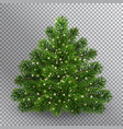 realistic christmas green tree without toys vector image