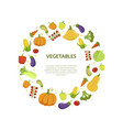 round frame of different fresh vegetables vector image vector image