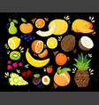 set of colorful hand draw fruits tropical sweet vector image vector image