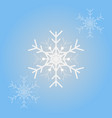 snowflakes for christmas design isolated vector image vector image