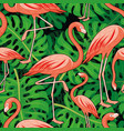 tropical leaves and pink flamingos vector image vector image