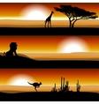 animals on savannah at sunset vector image
