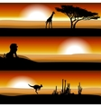 Animals on the savannah at sunset vector image
