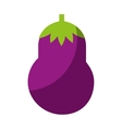 beet fresh vegetable isolated icon vector image
