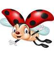 Cartoon ladybug flying isolated on white backgroun
