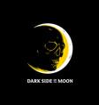 dark side moon vector image